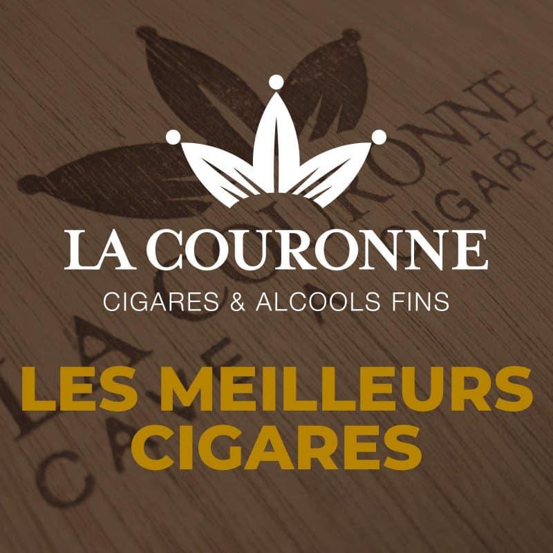 Les meilleurs cigares 🏆