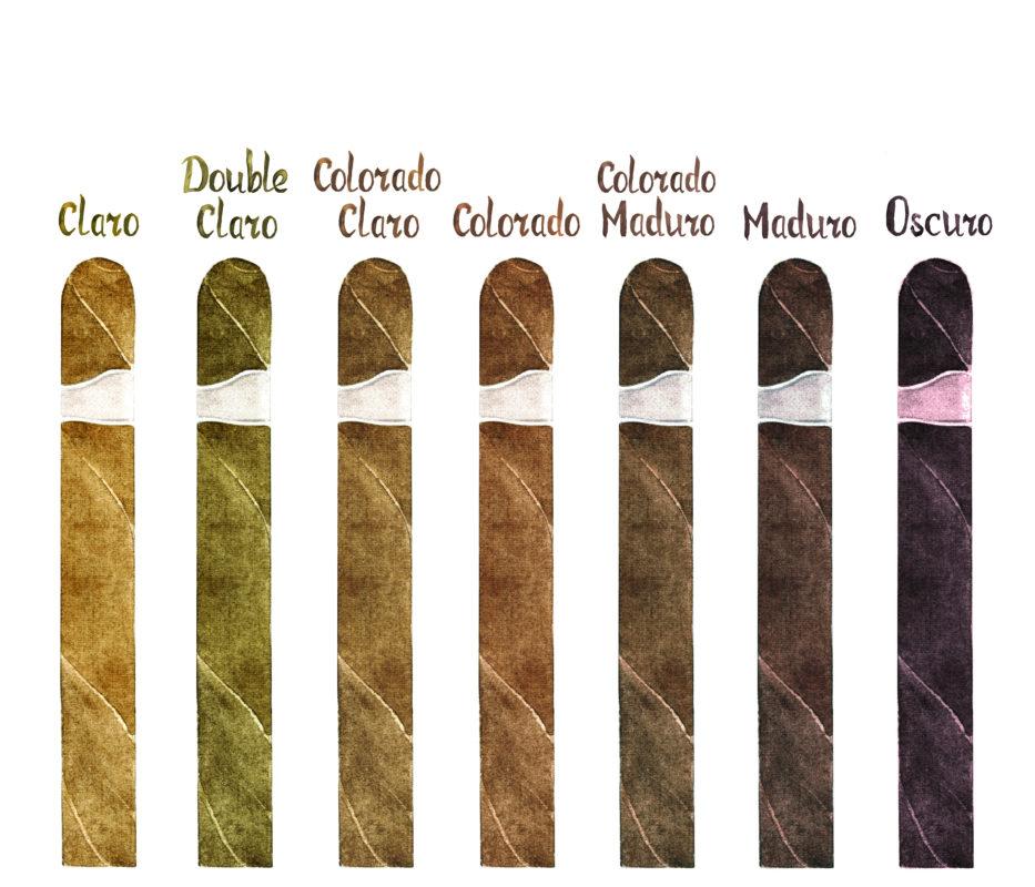 Spectrume des couleurs de capes